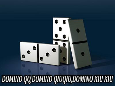 domino-qiuqiu